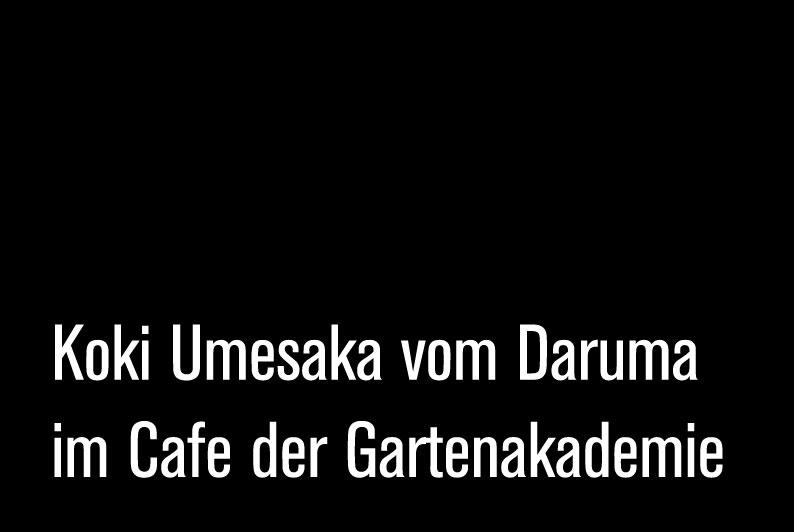 blog-koki-umesaka-daruma