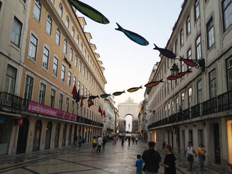 Auf Fischzug in Lissabon