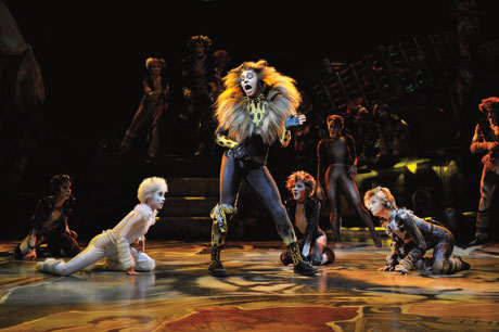 blog_catsmusical_berlin02