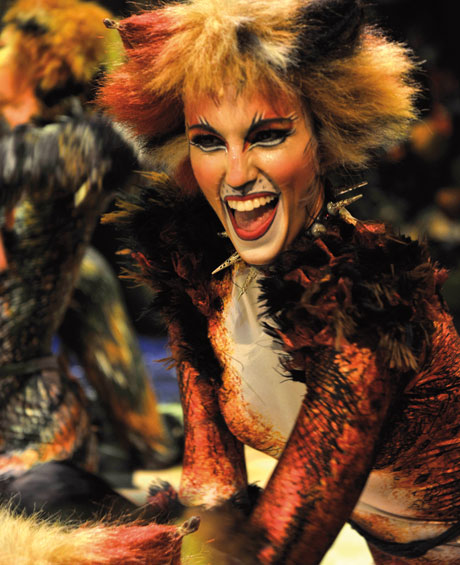 blog_catsmusical_berlin04
