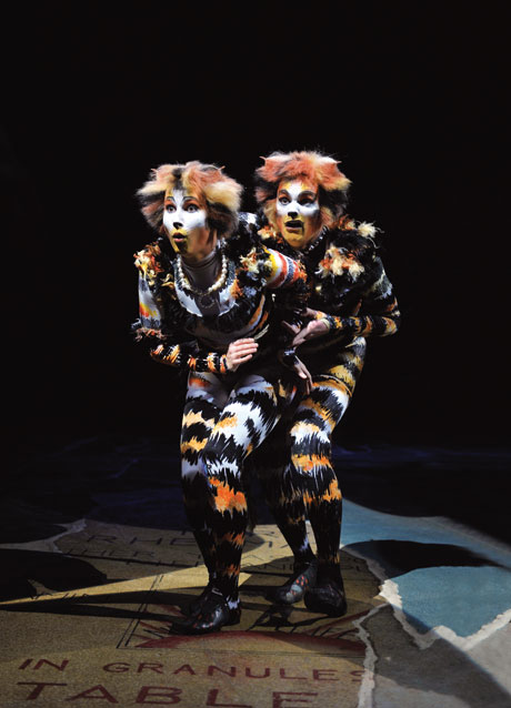 blog_catsmusical_berlin05