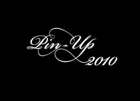 blog_eizopinup2010