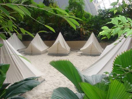 blog_tropicalisland02