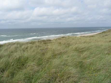 blog_wonnemeyer_sylt04