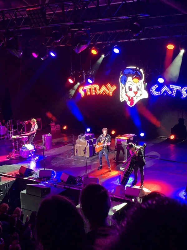 Stray Cats Konzert in der Columbiahalle